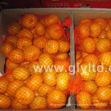 Nouvelle culture chinoise fraîche et de bonne qualité mandarine
