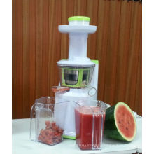 2013 new plastic slow juicer multifunction AJE318