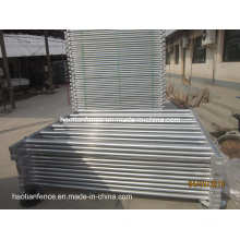 80X40mm Oval Pipe Cattle Fencing