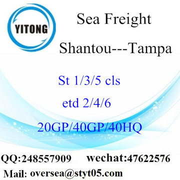 Shantou Port Sea Freight Shipping To Tampa