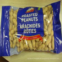Novo Crop Roasted Peanut Inshell Preço de Fábrica Pacote Pequeno