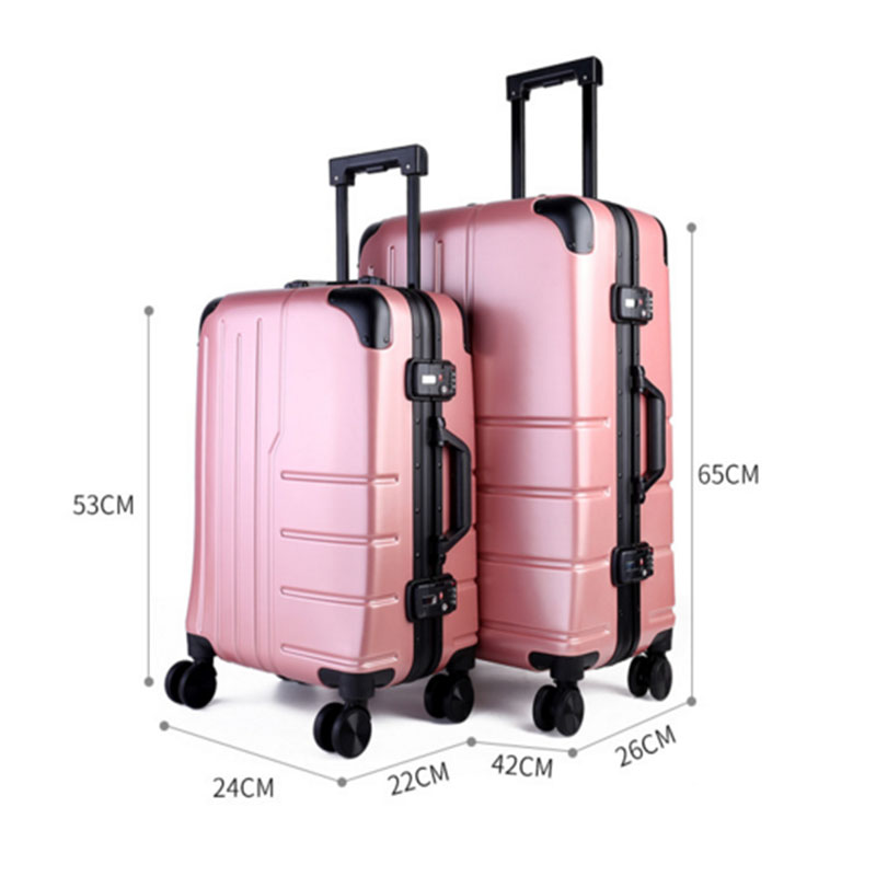 Women pc luggage