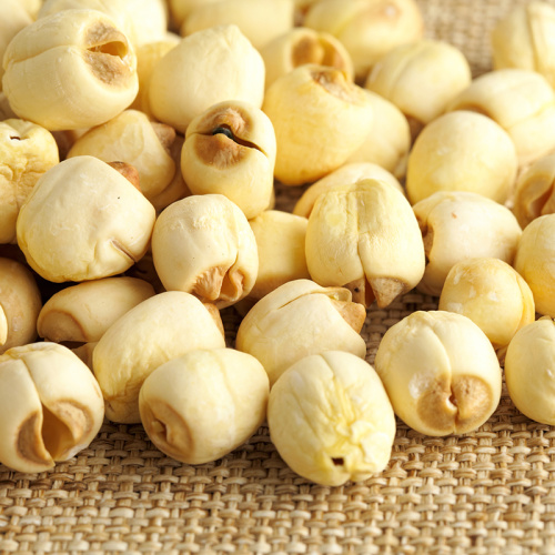 High-quality lotus seeds at reasonable prices
