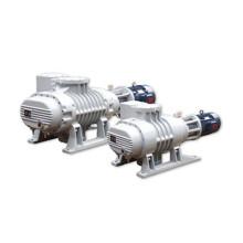 Pompe à vide de métallurgie de compresseur de biogaz