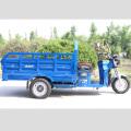 Neues Design Dreirad zum Verkauf in Philippinen