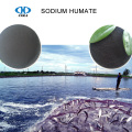 Chuangxin NaHA Sodium Humate pour additif alimentaire
