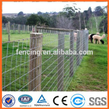 cattle farming knotted grassland fence