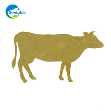 Live Cattle Yeast Wholesale For Animal Feeding Grade