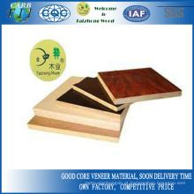 Madeira, grão, álamo, madeira compensada, coloridos, desenho