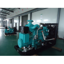 Hochwertiger Cummins Gas Generator Set
