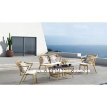 Holz Farbe PE Rattan Wicker Outdoor Sofa Set Bp-8021A