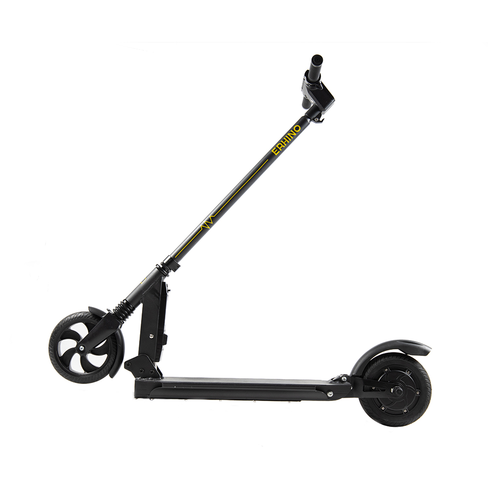 Electric Scooter Youth
