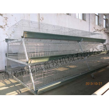 Galvanized a Type of Pullet Chicken Cage