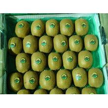 2011 fresh kiwi fruit with the best quality