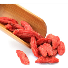 Organische Goji Berry USDA zertifiziert