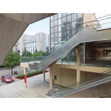 Nuevo Diseño Vvvf Bsdun Escalera Automática Fabricante China