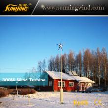 300W Wind Solar Hybrid System