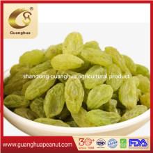 Sales Promotion New Crop Colorful Raisins