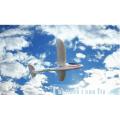 WL Spielzeug F959 RC EPO / RTF Segelflugzeug Hochgeschwindigkeitsschwanz-geschobenes Design 2.4g rc Hubschrauber Spielzeug
