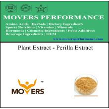 Extracto de buena calidad de extracto de extracto de Perilla
