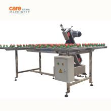 Small Glass Edging Beveling Machine Factory Price