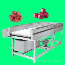 brush type washing machine/equipment/plant/date washing machine/jujube washing machine