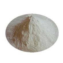 Xanthan Gum CAS Nr. 11138-66-2