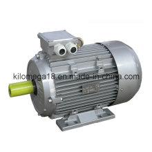 Серии y2 3-Фазные асинхронные Электродвигатели 0.75 кВт-генератор 280kw
