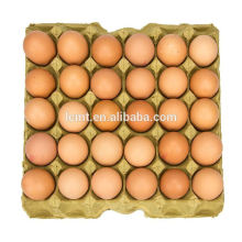 HighPoint egg carton suppliers of egg trays for sale