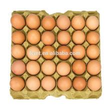 Fornecedores da caixa do ovo do HighPoint de bandejas do ovo para a venda