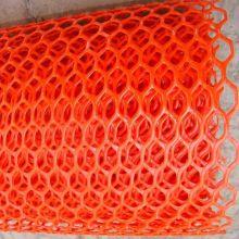 Fil plat de diamant de couleur rouge en plastique plat