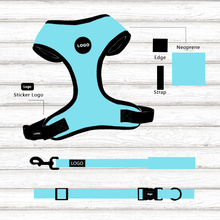 Поводок и ошейник для собак Safe Comfy Bright