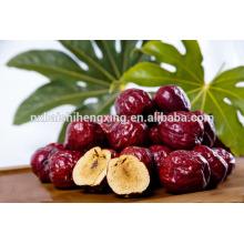 Jujube chinês vermelho apresenta alimentos orgânicos