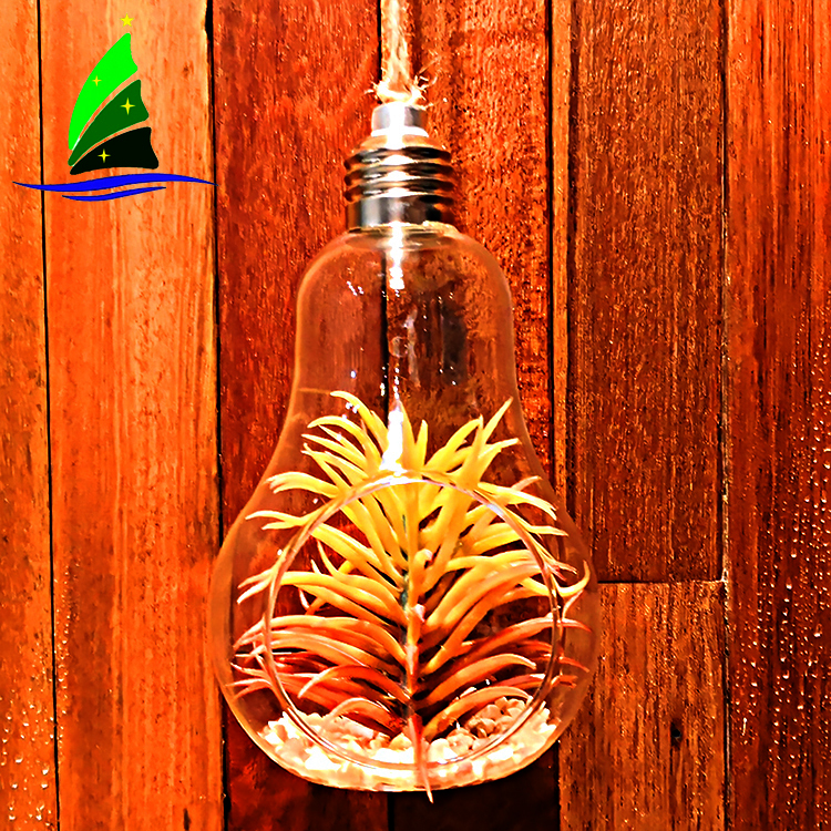 Bulb Shape Air Plant Glass Terrarium