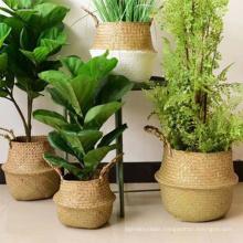 Household decor handmade seagrass belly basket / durable woven seagrass flower pot basket