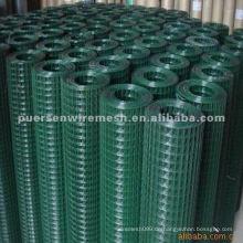 PVC beschichtetes geschweißtes Maschendraht (Fabrik)