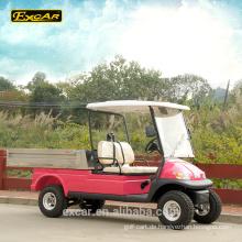 Benutzerdefinierte 2-Sitzer Fracht Golfwagen Dienstprogramm Buggy Warenkorb