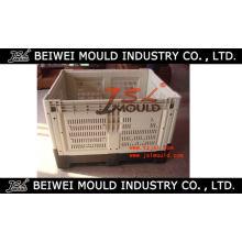 Molde plástico industrial da caixa do retorno