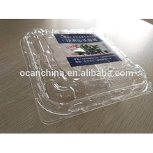 Blister Pet Rigid Sheet for Fruit Packing