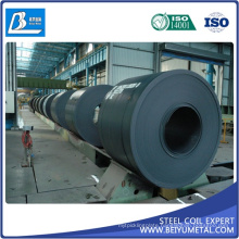 Hot Rolled Steel Coil HRC SPHC SAE1010 Sphd