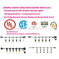 Outdoor String Lights Set Commercial Grade Edison Strang Beleuchtung - 48ft Heavy Duty Cord 18 Steckdosen 21 Glühbirnen (3 Spa