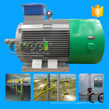 100kw Pmg Generator Low Rpm with Permanent Magnet