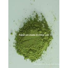 High Quality Barley Grass Powder