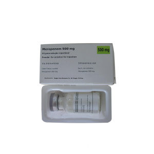 GMP Meropenem zur Injektion 500 mg