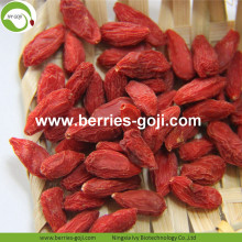 Anti Age Natural Fuits Red Goji Bagas Comum