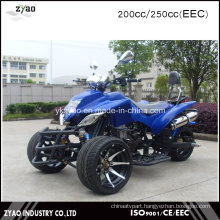 Street Legal ATV for Sale 250cc EEC Trike