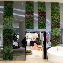 Высокая имитация подгонянная искусственная загородка листьев для украшения магазина