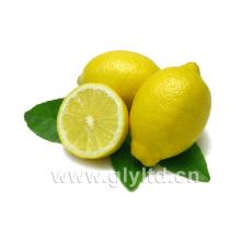 Fournisseur chinois de citron frais / citron vert