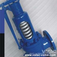 Válvula de seguridad de baja elevación A216 Wcb