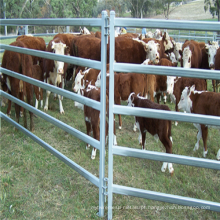 Hot Sale Squre / round pipe horse fence